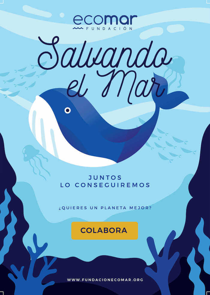 Salvando el mar. Fundación Ecomar